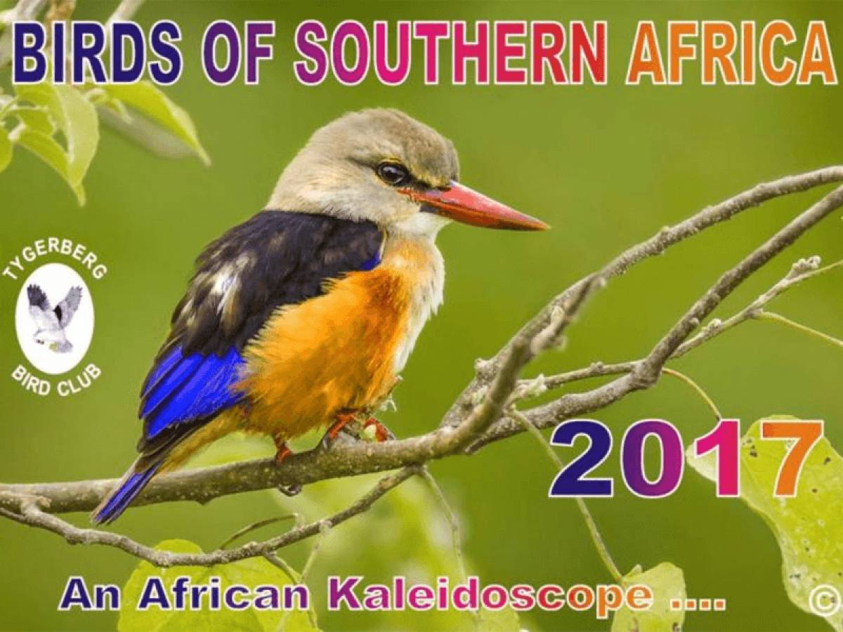 Order the 2017 Birding Calendar - Tygerberg Bird Club
